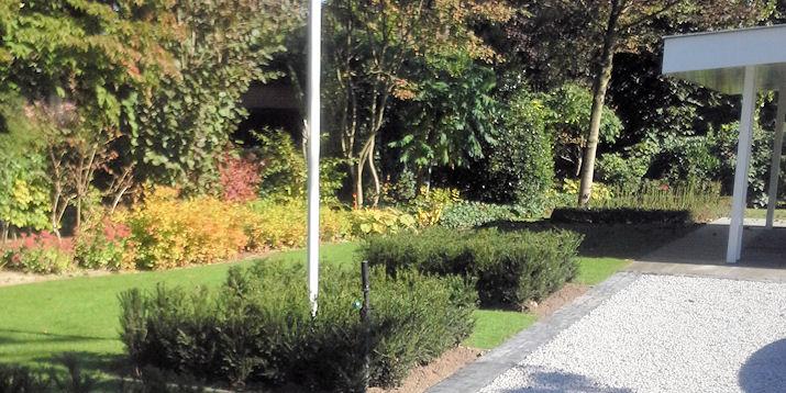 Aanleg / renovatie grote tuin